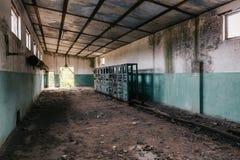 Ridit ut kusligt rum i övergiven fabriksbyggnad Arkivbilder