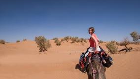 Ridning för ung kvinna på en dromedar i den marockanska sandöknen arkivfoto