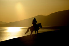 Ridninghäst för kinesiskt folk Royaltyfria Foton