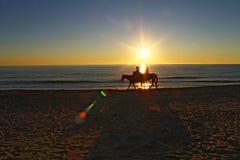 Ridninghästar på stranden under solnedgång Royaltyfri Bild