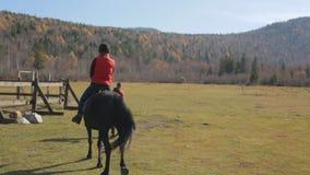 Ridninginstruktören leder hästen på en koppel med det kvinnliga jockeysammanträdet i sadeln arkivfilmer