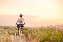 Ridningmountainbiken för ung kvinna i det härliga fältet av fjädergräs på solnedgången Affärsföretag och lopp arkivfoton