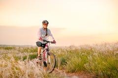 Ridningmountainbiken för ung kvinna i det härliga fältet av fjädergräs på solnedgången Affärsföretag och lopp royaltyfri bild