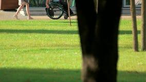 Ridningrullstol för rörelsehindrad person i parkera stock video