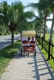 ridningturisttrehjuling royaltyfri bild