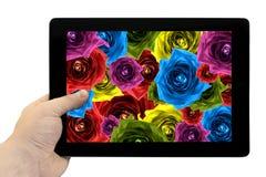 Riduca in pani il PC a disposizione con il collage della miscela del fondo rosa dell'arcobaleno dei fiori sullo schermo isolato fotografia stock