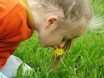 Riechen Sie die Blume Stockfoto