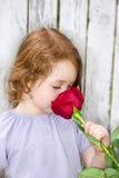 Riechen von einer Rose Lizenzfreies Stockbild