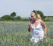 Riechende Blume der Frau Stockfoto