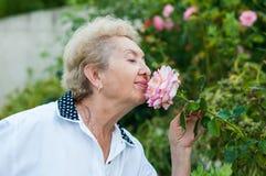 Riechende Blume der netten älteren Frau im Garten an einem warmen Sommertag Stockfotos