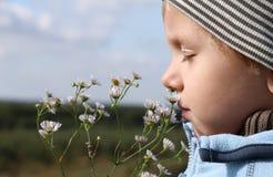 Riechende Blume des jungen Jungen Stockfoto