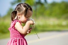 Riechende Blume des Kleinkindes Stockfotografie
