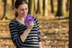 Riechende Blumen Stockfoto