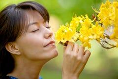 Riechende Blumen der beiläufigen Frau Stockfoto
