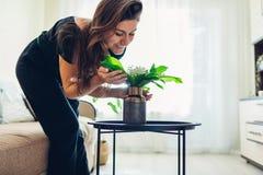 Riechende Blumen der Frau im Vase auf Tabelle Allergie geben frei Hausfrau, die um Gem?tlichkeit in der Wohnung sich k?mmert stockbild