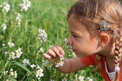 Riechende Blumen des jungen Mädchens Stockfoto