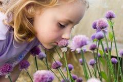 Riechende Blumen des jungen Mädchens Stockfotos