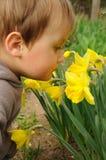 Riechende Blumen des Kindes Lizenzfreie Stockfotografie