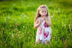 Riechende Blumen des süßen blonden Mädchens auf der Wiese lizenzfreies stockbild