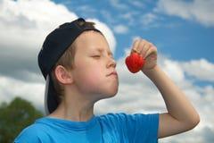 Riechende Erdbeere des netten Jungen im Freien stockfotografie