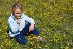 Riechende Frühlingsblume des Kindes stockfoto