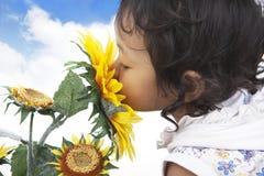 Riechende Sonnenblumen des netten Mädchens lizenzfreie stockfotos