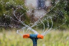 Riego del jardín usando una regadera de la rotación Primer del sistema de irrigación que cultiva un huerto foto de archivo