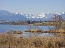 Riegsee - hed sjö i utlöparen av fjällängarna arkivfoton