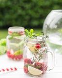 Riegue con las frambuesas, la cal, el hielo y la menta en fondo rústico limonada Imagenes de archivo