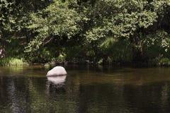Riegue corriente reducen y calman un río Foto de archivo libre de regalías