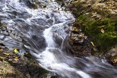 Riegue el funcionamiento que fluye de la corriente sobre rocas y musgo en un arroyo de Fotografía de archivo libre de regalías