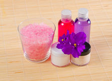 Riegue el gel, la crema y la sal de baño con la violeta Imagenes de archivo