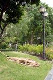 Riegue en parque foto de archivo libre de regalías