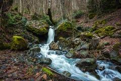 Riegue fluir abajo de rocas, musgo en las rocas, Svaneti, Georgia Fotos de archivo