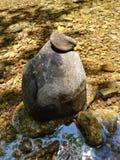 Riegue fluir de los árboles de las rocas de los pescados del claro de la montaña de la cala del río fresco imagen de archivo libre de regalías