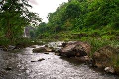 Riegue fluir sobre rocas en un bosque verde enorme Fotos de archivo