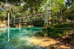 Riegue la caída en la estación de primavera situada en selva profunda de la selva tropical Fotos de archivo libres de regalías