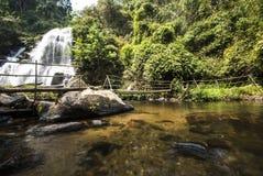 Riegue la caída en la estación de primavera situada en selva profunda de la selva tropical. fotos de archivo libres de regalías