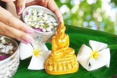 Riegue la ceremonia de la bendición por el festival de Songkran o el Año Nuevo tailandés Foto de archivo