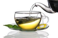 Riegue la colada en la taza con la bolsita de té Imagenes de archivo