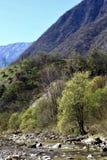 Riegue la conexión en cascada sobre rocas en una cala cerca de Arsiero, Italia Imágenes de archivo libres de regalías