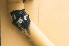 Riegue la pared del tubo del escape, el musgo y el agua oxidada Fotografía de archivo libre de regalías