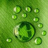 Riegue las gotas en la hoja y recicle la insignia Imagen de archivo