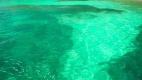 Riegue las ondulaciones en la superficie del agua azul almacen de video