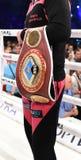 Riem van de cruiserweightkampioen van WBO de Intercontinentale royalty-vrije stock foto