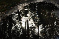 Riempia di pozzanghere una strada con la riflessione della foresta Immagini Stock Libere da Diritti