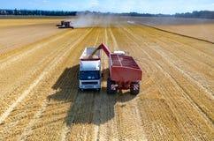 Riempiendo il camion di semi del grano Immagine Stock Libera da Diritti