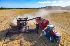 Riempiendo il camion di semi del grano Fotografie Stock Libere da Diritti