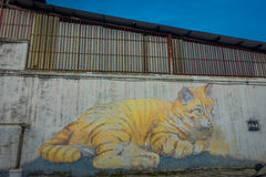 Riese Cat Mural, Straßenkunst in George Town, Malaysia Lizenzfreie Stockfotos