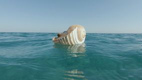 Riese Tun Shell Swirling stock footage